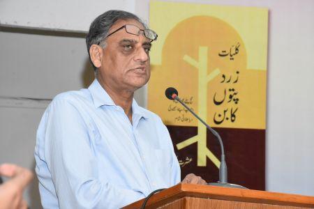 Book Launching Of \'Zard Paton Ka Ban\' Kluliyat By Ishrat Afreen At Arts Council Of Pakistan Karachi (13)