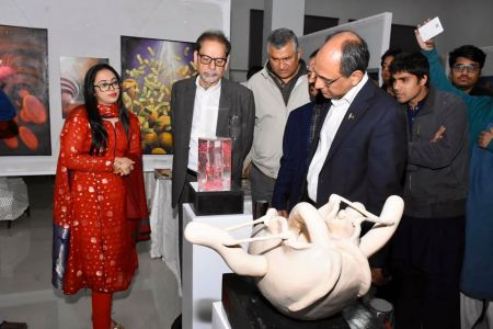 Inauguration Of ACIAC Thesis Exhibition 2020 At Arts Council Karachi (4)