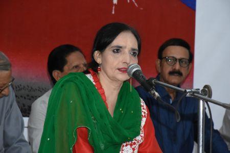 Pak Japan Urdu Haiko Mushaira At Arts Council Karachi (8)